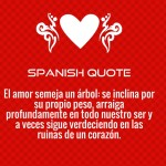Spanish Love Quotes and Poems for Him / Her