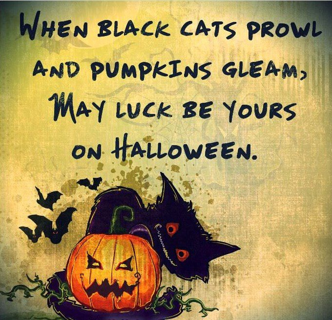 funny-halloween-quotes-images