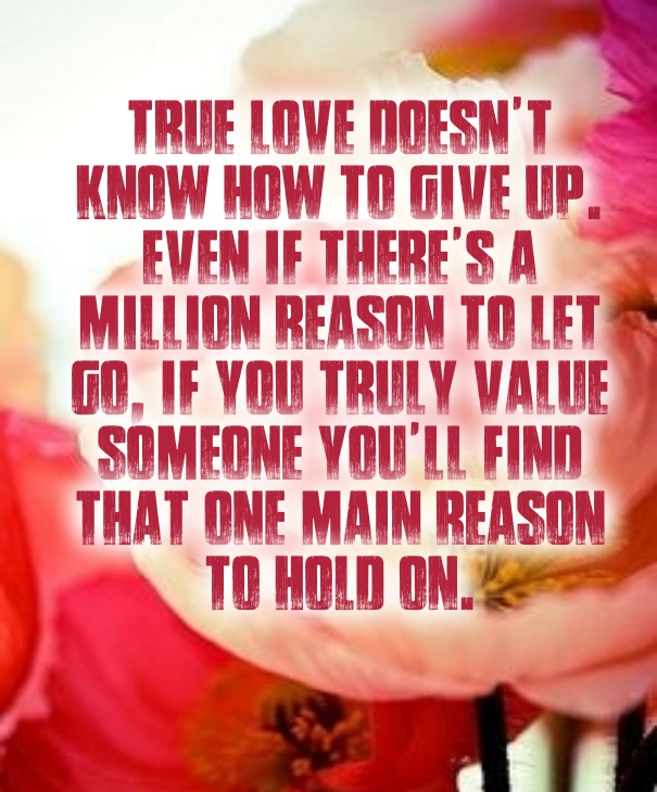 Never Give Up On Love Quotes Quotes Square