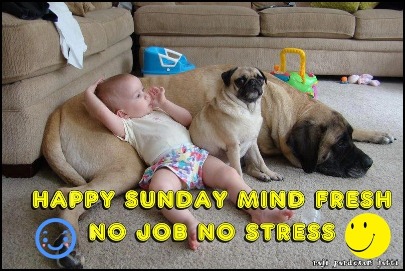 Happy Sunday Love Quotes Images And Funny Meme Quotes Square